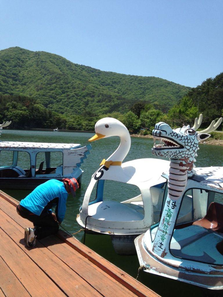 Swan Paddle Boats in Geoje