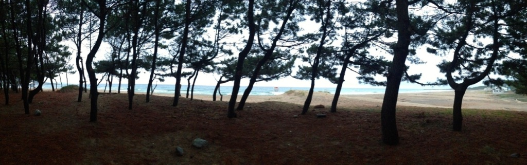A beautiful place to camp in Korea