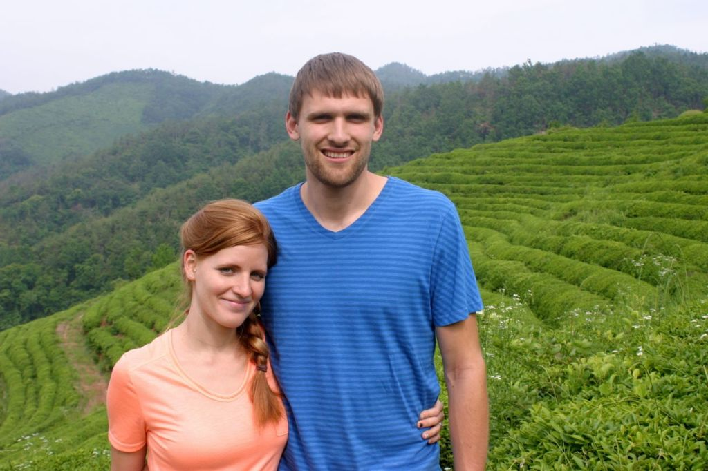 Boseong Green Tea Fields