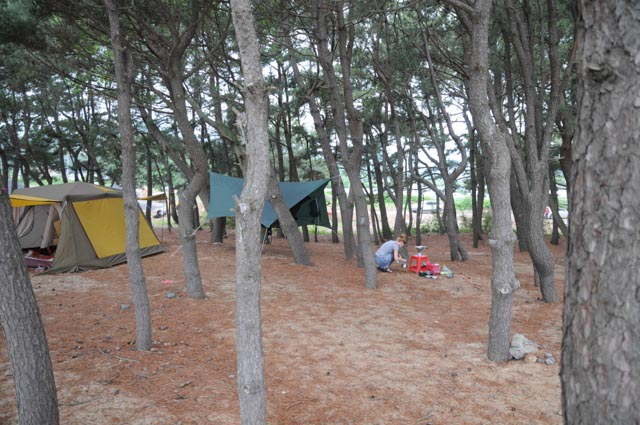 Camping at Pohang