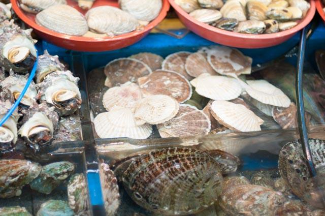 Touring Busan's Jagalchi Fish Market