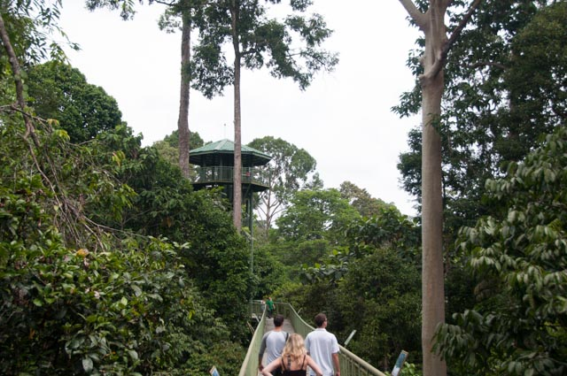Sandakan Rainforest Discovery Center
