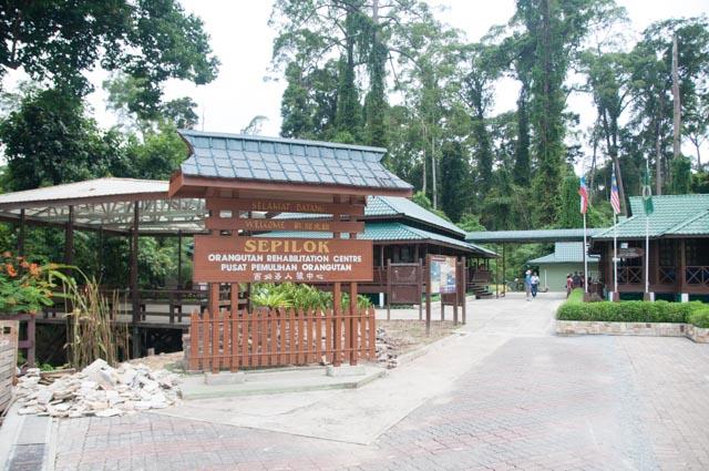 wpid-Borneo-Trip-246.jpg