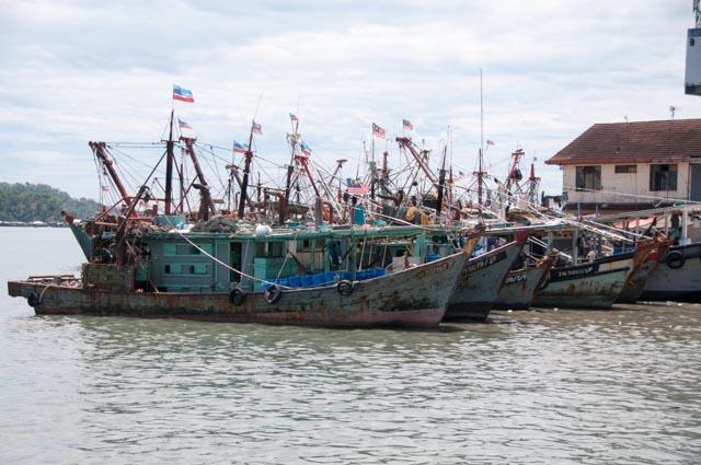 Borneo KK