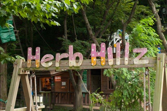 Herb Hillz Daegu