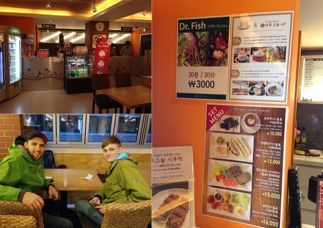Dr Fish Cafe Seoul