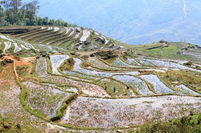 Trekking in Sapa, Vietnam