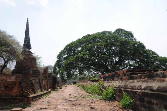 Ancient Ayutthaya, Thailand