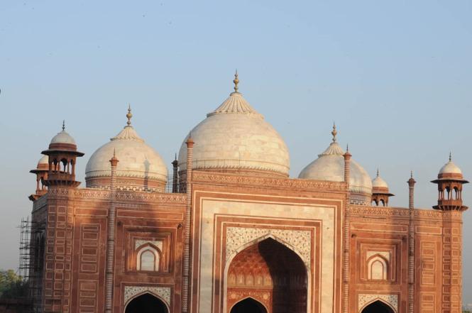 Taj Gates