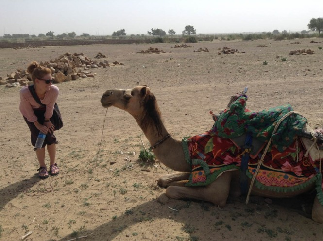 Camel Trekking in India