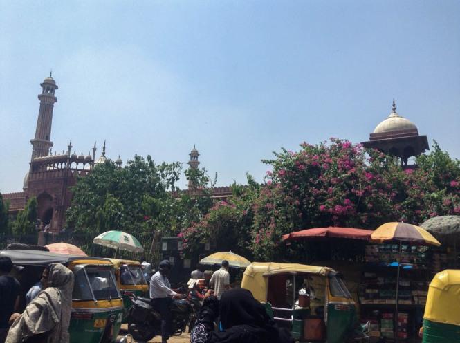 Exploring India's Capital